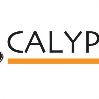 calypso lattenbodems